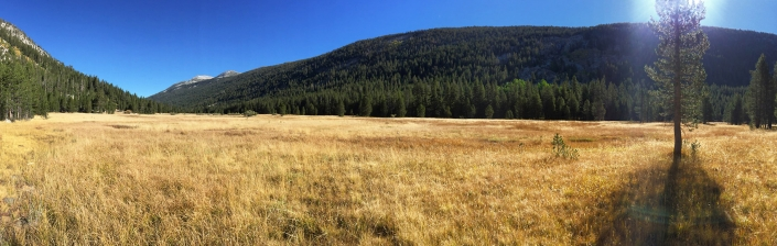 John Muir Trail mile 32. Panoramic landscape of tree lined grassy meadow nearing Yosemite National Park by Phoenix commercial photographer Jason Koster.