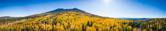 Humphreys Peak Flagstaff Arizona Aspen trees panoramic FAA 107 certified drone operator aerial photography
